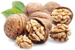 To sell walnuts, export, walnuts wholesale, walnuts in Moldova