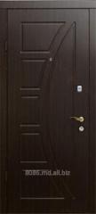 Uși de intrare metalice/Двери входные
