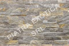 Stone of natural facing 5 cm color: Dioli