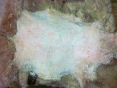 Bárány bör moldáviai kivitel
