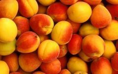 Aprikosen auf Exporte in der Republik Moldau