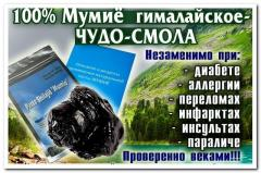 Mumiyo Himalaya, natural in pitch, 20 grams - low