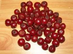Плоды Шиповника (Roza Canina)