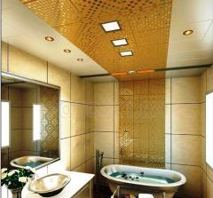 Ceilings for bathrooms