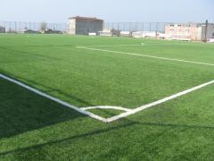 Газоны для спортивных площадок