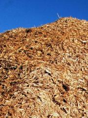 Fuel from biomass