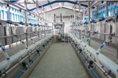 Sali de muls cu iesire rapida pentru oi/capre