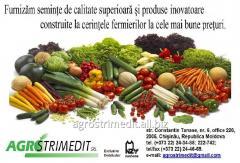 Семена Нунемс - выбор профессионалов