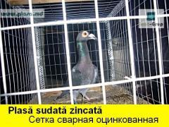 Plasa metalica sudata in Moldova,сетка сварная