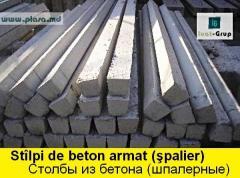 STILPI de beton pentru gard, STOLBY reinforced