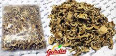 Ciuperci de la compania Gordincom