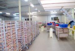 Овощи сушеные на экспорт