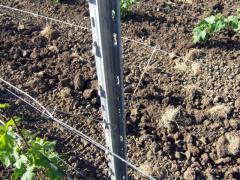 Проволока оцинкованная для виноградников высокой прочности в Молдове