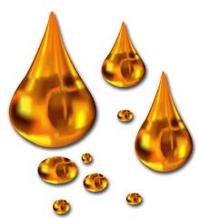Технология производства рапсового масла