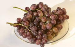 Виноград сорта в Молдове