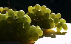 Столовый виноград в Молдове