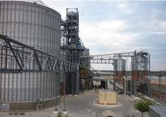 Port elevator for grain