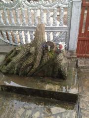 Дерево( Copac). Скульптуры из камня. Скульптура.