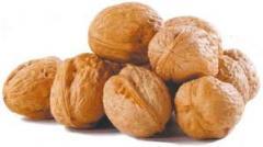 Орехи на зкспорт!