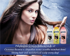 An oily hair VIANTIK ASSET shampoo, for dry hair