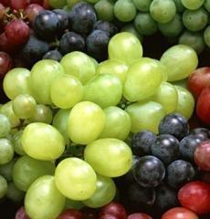 Grapes Kish Mish