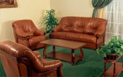 Мягкая мебель Leda