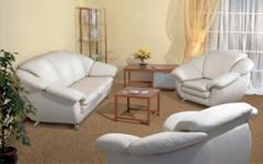Мягкая мебель Tiulpan