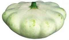 Seeds of bush pumpkins