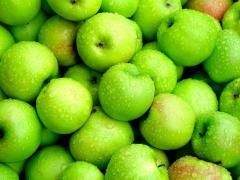 Яблоки, экспорт из Молдовы