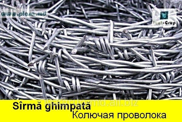 zabory_v_moldove