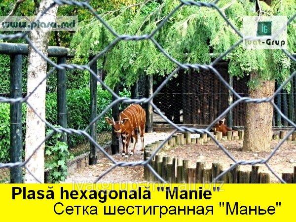 setka_pvs
