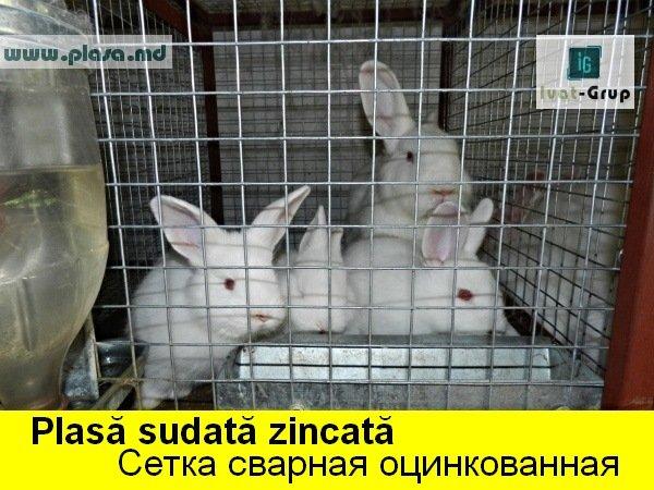 plasa_sudata_zincata_pentru_confectionarea