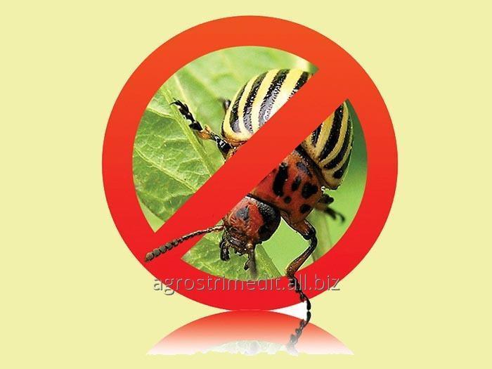 insekticidy