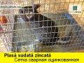 Сетка сварная оцинкованная в Молдове.Plasa sudata zincata in Moldova