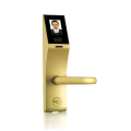 The smart lock with support of facial recognition of ZK Teco FL1000