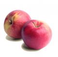 Яблоки сорт Айдаред