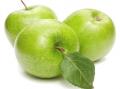 Яблоки сорт Симиренко