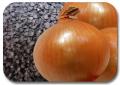 Семена лука халцедон выращенные на юге Молдовы урожай 2011г. схожесть 90-92%.