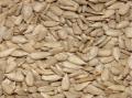 Семена от слънчоглед