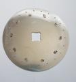 Nodet discuri de plantat 22 de găuri de 3,5 mm