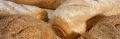 Improvers of the Gamma Premium flour