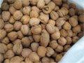 Орехи грецкие,на экспорт