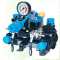 Pumps Poly2180-Poly 2025