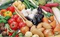 Удобрение органическое «BIOorganica»