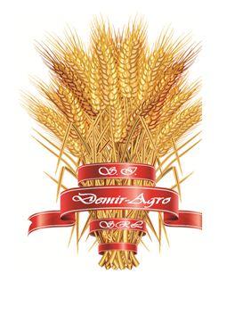 SI Demir-Agro, SRL, Комрат