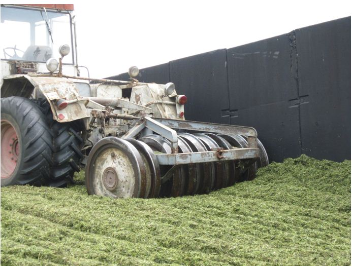 Order Laying of green material in a silage trench, aranjarea gazonului