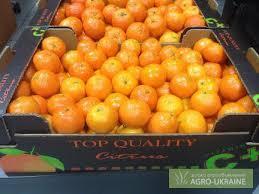Хранение фруктов и плодоовощной продукции, Весы 60 тн