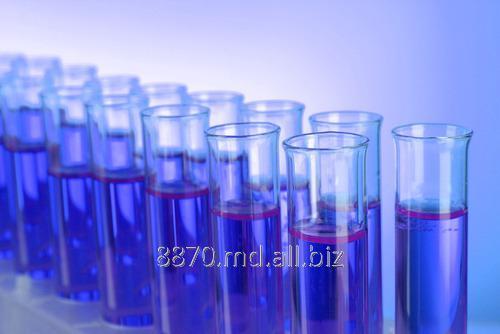 Заказать Анализ Echinococcus granulosus, IgG
