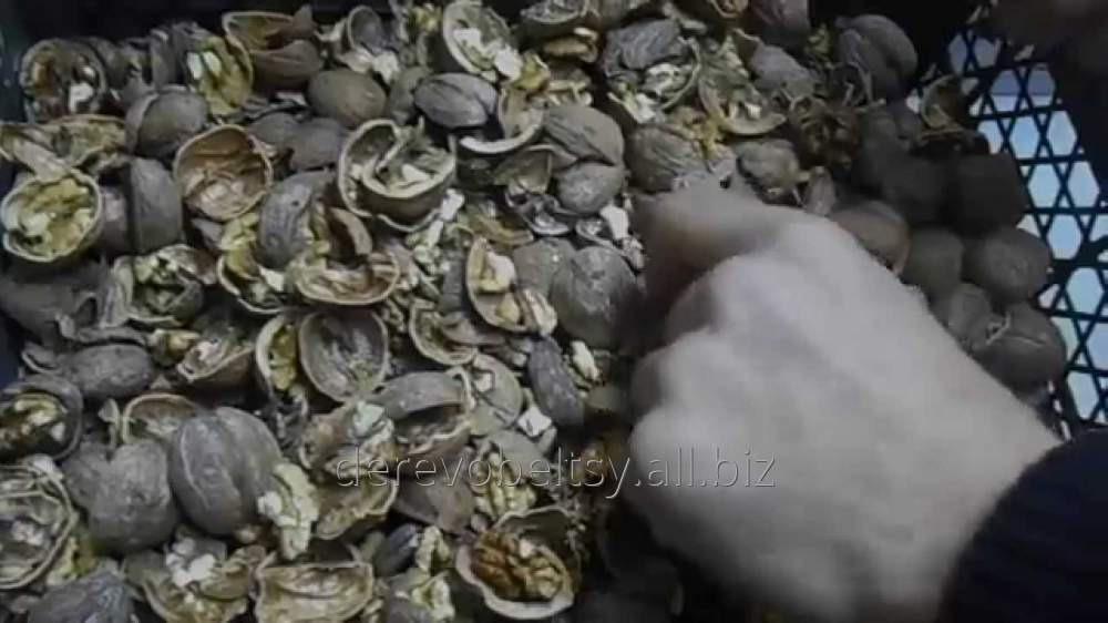 Заказать Переработка грецкого ореха в Бельцах