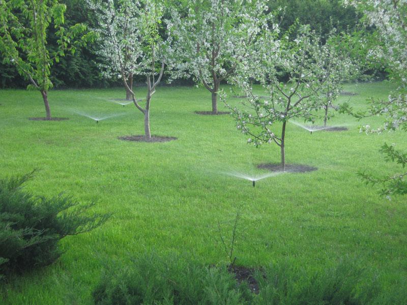 Заказать Насосные системы для полива сада